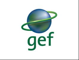 Global Environmental Fund